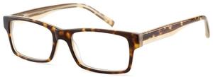 Converse Destination AF Eyeglasses