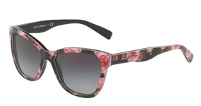 Dolce & Gabbana DG4237 Print Rose On Black