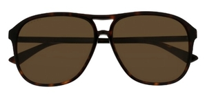 Gucci GG0016SA Dark Tortoise with Brown Lenses