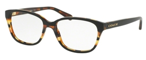 Coach HC6103 Eyeglasses