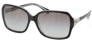 Coach HC8009 FRANCES Sunglasses