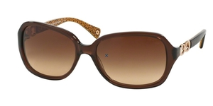 Coach HC8019 Sunglasses