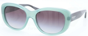 Coach HC8083 L071 DARCY Sunglasses