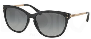 Coach HC8084 L072 CELIA Glasses