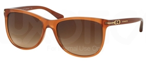 Coach HC8117 Sunglasses