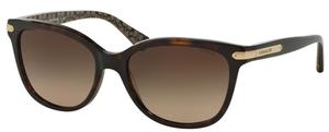 Coach HC8132 Sunglasses