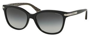Coach HC8132F Sunglasses