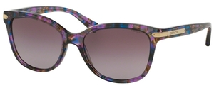 Coach HC8132F Sunglasses