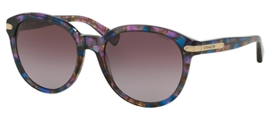 Coach HC8140 L111 Sunglasses