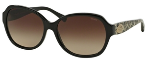 Coach HC8150F Sunglasses