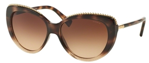 Coach HC8157 Sunglasses