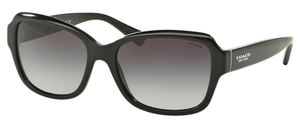 Coach HC8160 Sunglasses