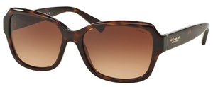 Coach HC8160 Sunglasses