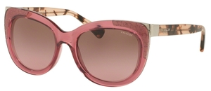 Coach HC8171 L152 Sunglasses