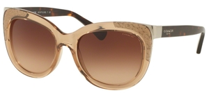 Coach HC8171 L152 Sunglasses