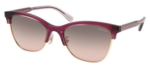 Coach HC8277 Sunglasses