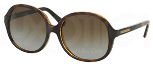 Michael Kors MK6007 DK TORTOISE SNAKE with Polarized Brown Gradient Lenses