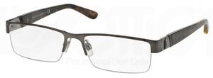 Polo PH1117 Glasses