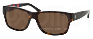 Polo PH4083 Havana Tortoise Vintage Effect with Brown Lenses