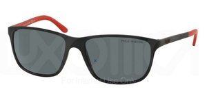 Polo PH4092 Sunglasses
