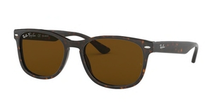 Ray Ban RB2184 Sunglasses