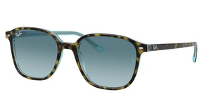 Ray Ban RB2193 Leonard Sunglasses