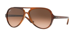 Ray Ban RB4125 CATS 5000 Stripped Havana w/ pink gradient brown lenses