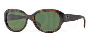 Ray Ban RB4198 Glasses