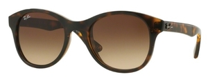 Ray Ban RB4203 Shiny Havana with Brown Gradient Lenses