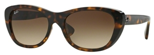 Ray Ban RB4227 Sunglasses
