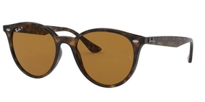 Ray Ban RB4305 Sunglasses
