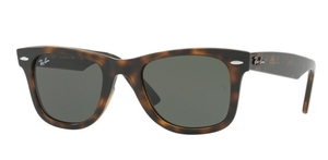 Ray Ban RB4340 Wayfarer Havana with G-15 lenses