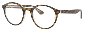 Ray Ban Glasses RX5361 Top Havana on Transparent