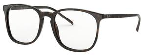 Ray Ban Glasses RX5387F Asian Fit Eyeglasses