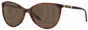 Versace VE4260 Amber Havana/Havana w/ Brown Lenses