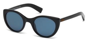 Ermenegildo Zegna ZC0009 Sunglasses