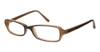 Ted Baker B827 Brown/Light Brown
