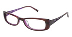 Ted Baker B843 PURPLE POP