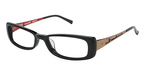 Ted Baker B843 EBONY/BROWN
