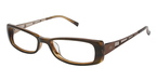 Ted Baker B843 BROWN STRIPES