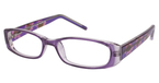 A&A Optical L4048-P Purple