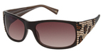 A&A Optical GL838A Brown
