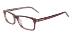 Lacoste L2602 (603) Striped Bordeaux