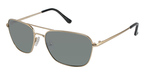 Ted Baker B494 Grant GOLD W/POLARIZED LENS