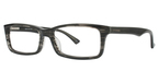 Continental Optical Imports Fregossi 391 Grey