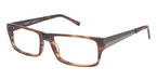 A&A Optical Buckeye Brown