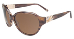 Tommy Bahama TB7031 Brown