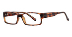 Continental Optical Imports See N' Be Seen 18 Tortoise