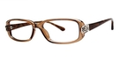Modern Optical Splendor Brown/Blue