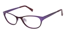 Crush CT11 Brown/Purple
